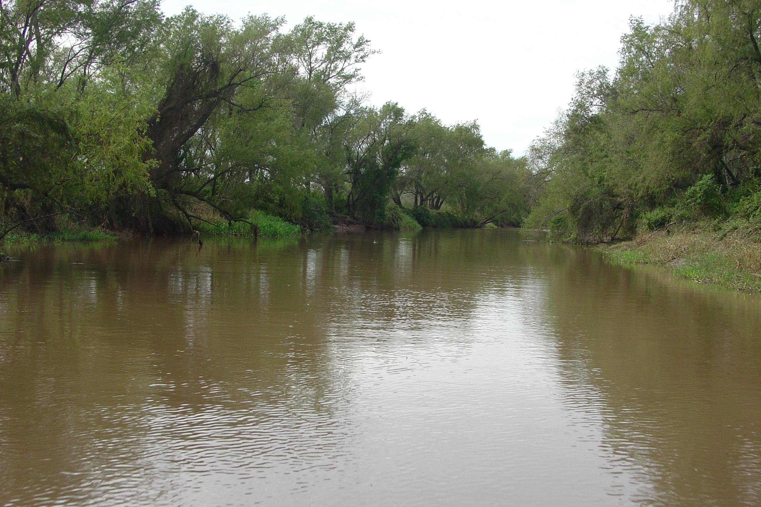 Paisaje del Delta del Paraná