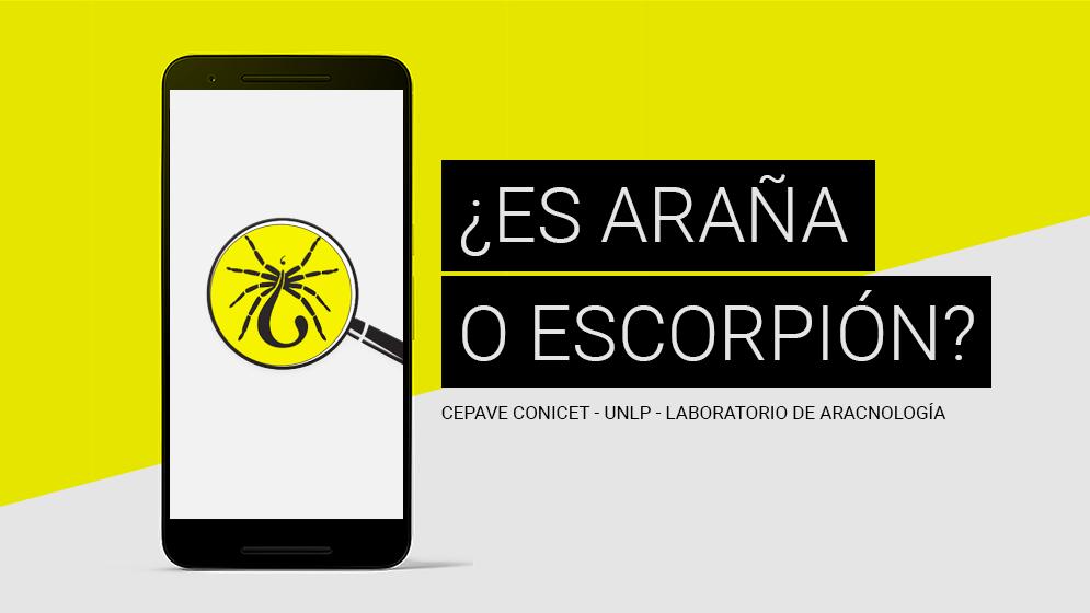 placa_appEscorpion