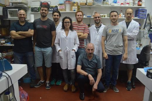 El Laboratorio de Nanobiomateriales del CINDEFI